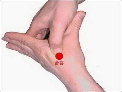 """Résultat de recherche d'images pour """"point d'acupuncture main tête"""""""