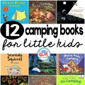I absolutely love camping and think that it is such a fantastic way to make memories that will last a lifetime. I cannot wait until our kids are a little bit older so that my husband and I can share our love for camping. Are you going camping anytime soon with your kids? If so, here are 12 of my favorite camping books. Pick one or a few and jump right on in and help get your kiddos even more excited about their upcoming camping trip.