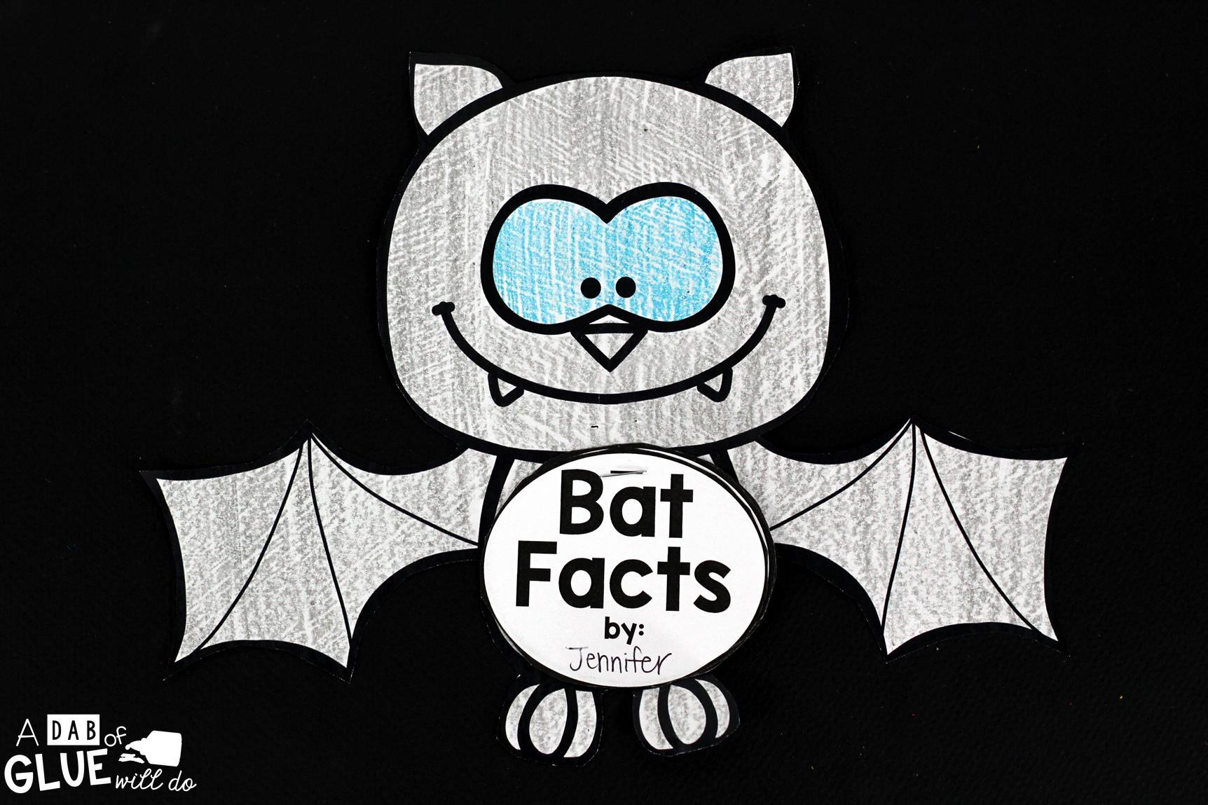 Bats An Animal Study