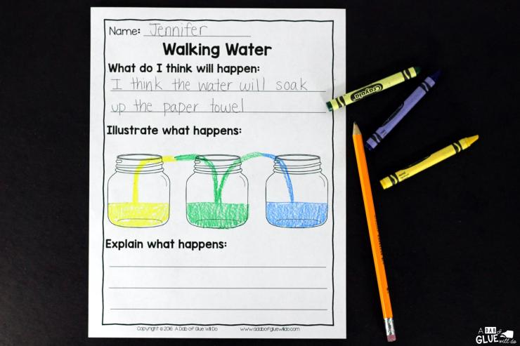 This Walking Water Experiment is a great hands-on science experiment perfect for anytime of the year. There is a free recording sheet printable included. This is perfect for preschool, kindergarten, and first grade students.