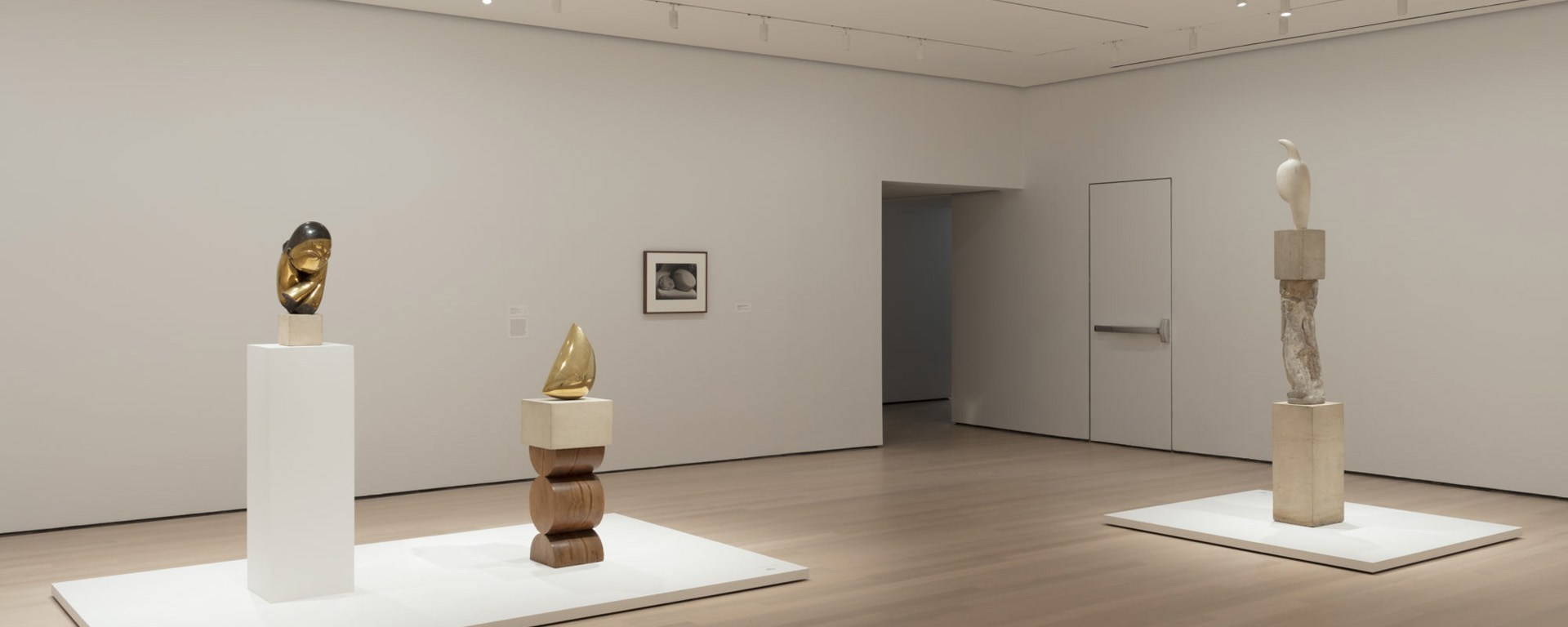 Installation view of Constantin Brancusi Sculpture, The Museum of Modern Art, New York, July 22, 2018–June 15, 2019. © 2018 The Museum of Modern Art. Photo: Denis Doorly