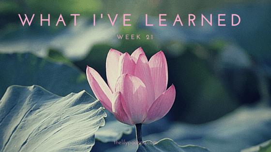 What I've Learned -- Week 21.