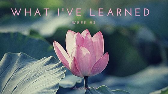 What I've Learned Week 23