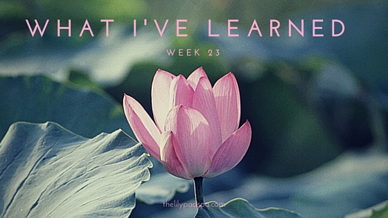 What I've Learned Week 23