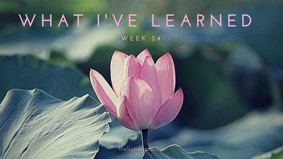 What I've Learned -- Week 24