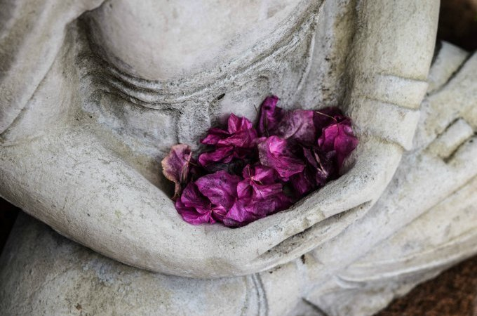 Meditation is how I cultivate health, wellness, vitality and spirituality