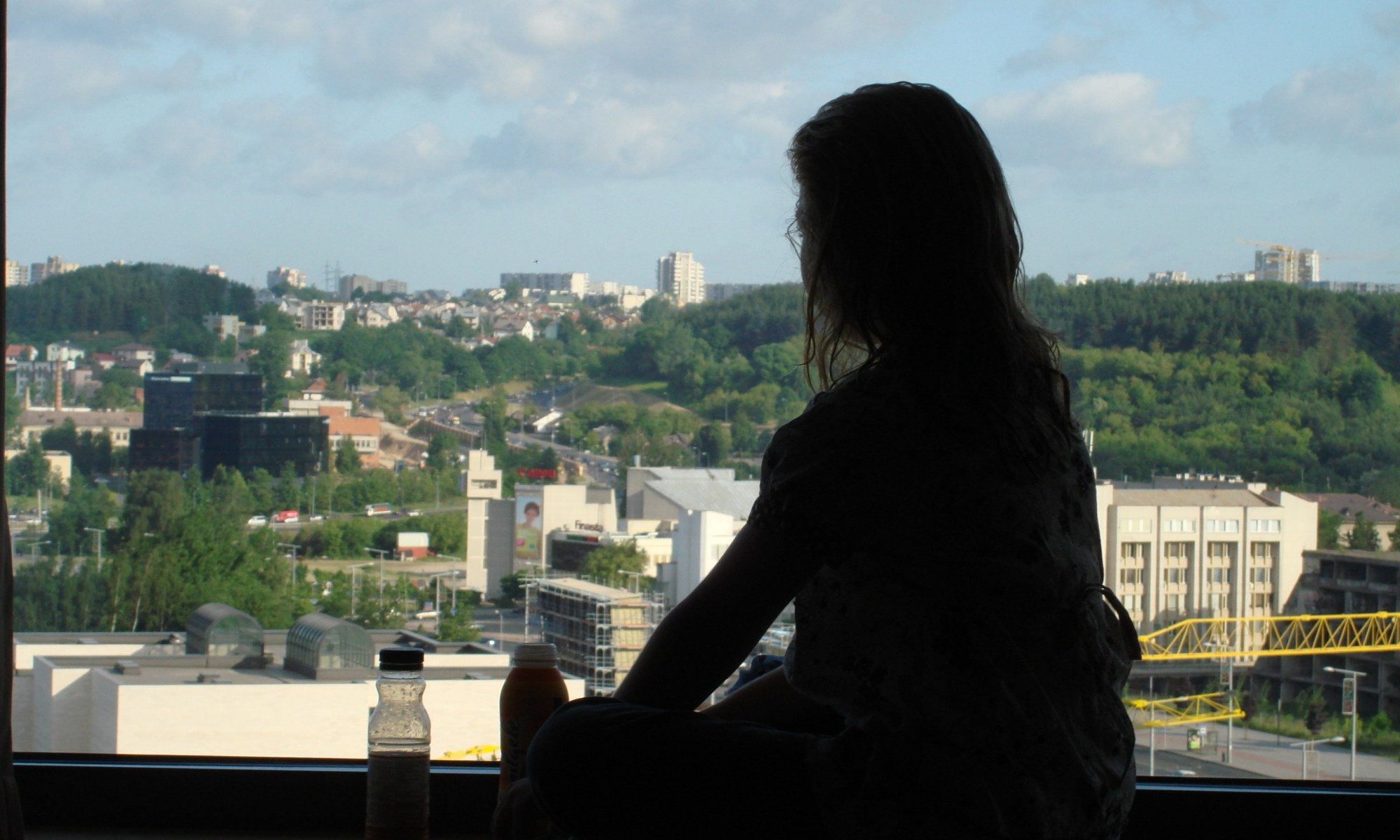 Silhouette overlooking Vilnius