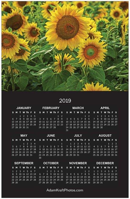 2019 Sunflower Poster Calendar