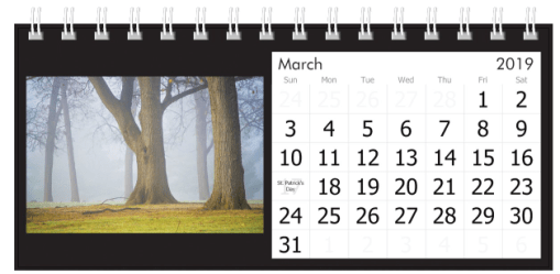 March 2019 Foggy Trees