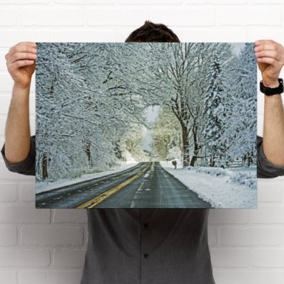 A country road framed by snow laden woods