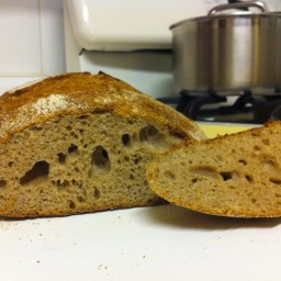 Tartine Bread, Day 8: Do you like watching paint dry? Grass grow?