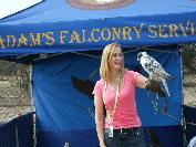 Adams Falconry Service