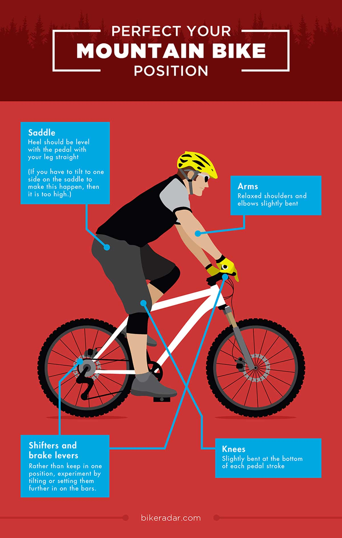 Getting Started With Mountain Biking Guide