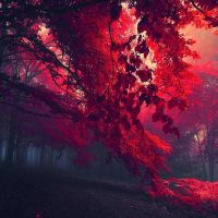 On the pulse of arriving autumn