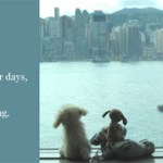 ADITL #3: Four Days In Hong Kong – Part 3