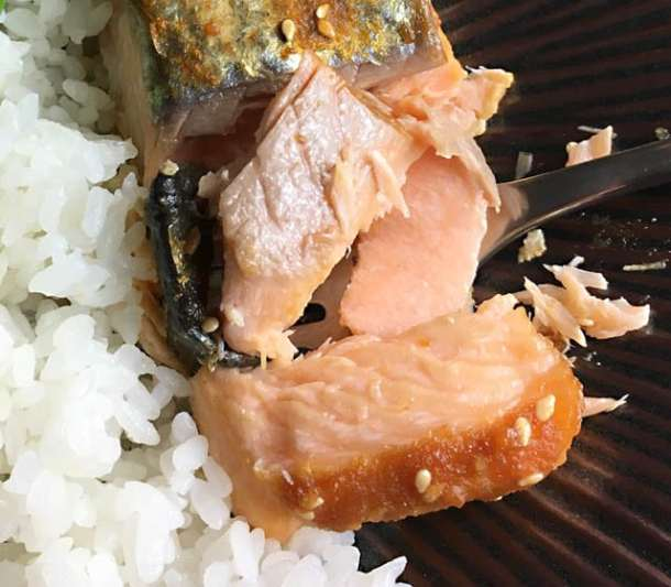 Close-up of flaked broiled miso salmon filet and white rice on a plate