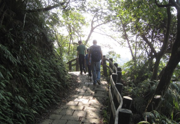 Walking a tree lined path in Elephant Hill in Taipei