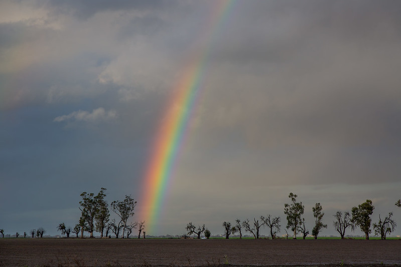 Long Life And A Pot Of Gold An article by Ravindra B Ghooi | Adbhut.in