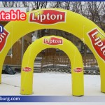 Inflatable Arch 11