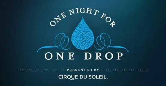 1NightFor1Drop-Cirque