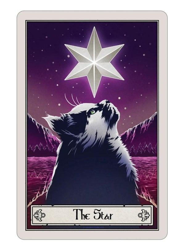 DEADLY TAROT - Felis The Star Tin Sign