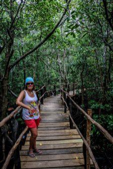 jozani_forest_zanzibar