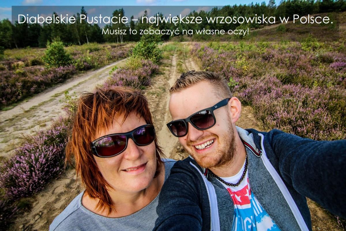 wrzosowisko_w_polsce_diabelskie_pustacie