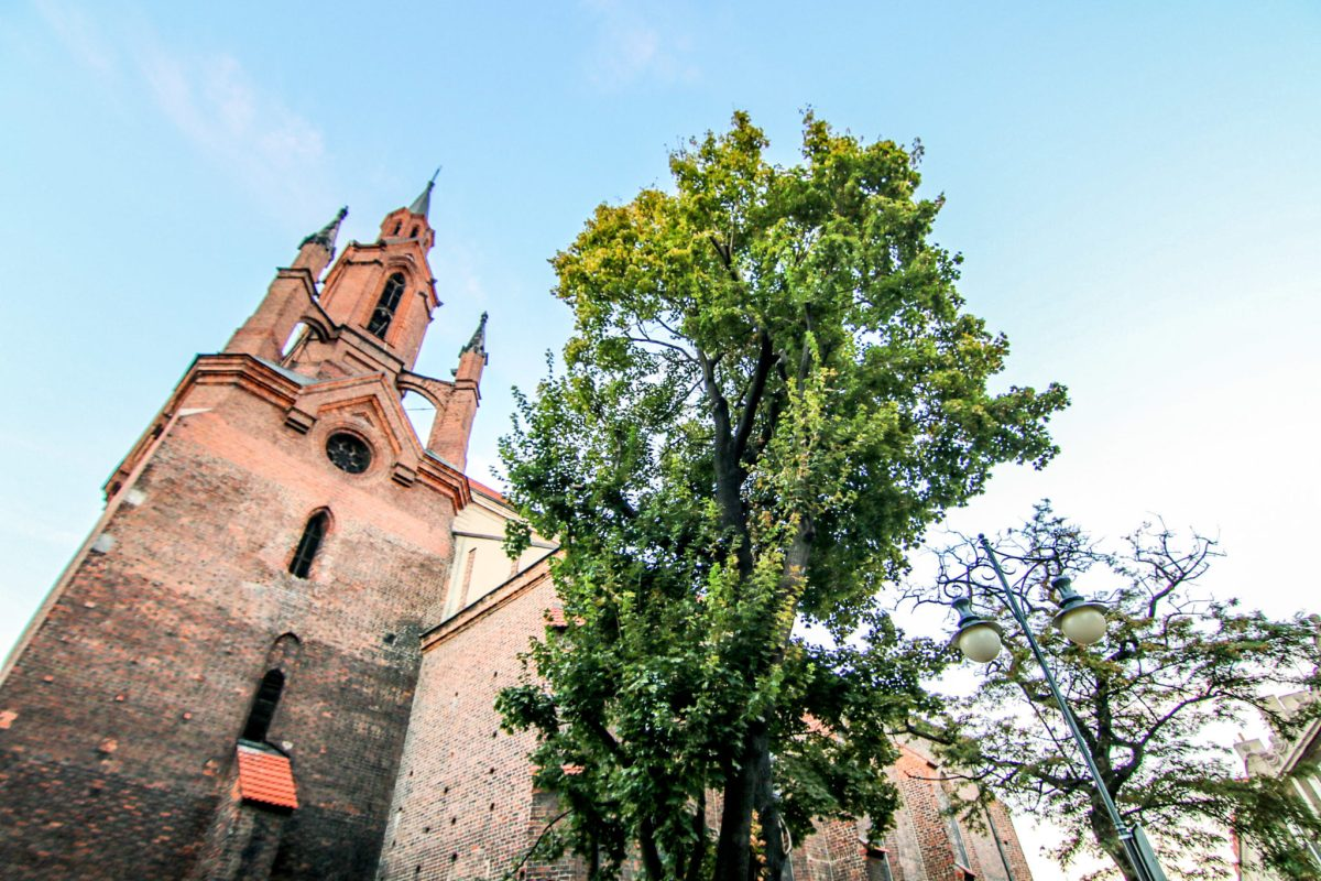 kalisz_atrakcje_katedra