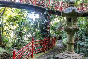 Funchal_atrakcje_Monte_palace