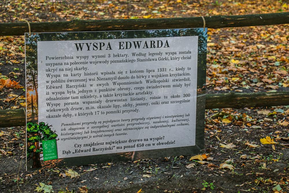 zaniemysl_wyspa_edwarda