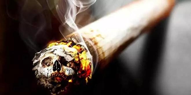 التدخين – الجنون الشائع
