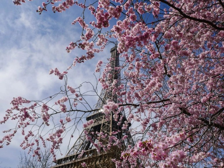 Visiting Paris for only one day may seem crazy, but seeing the top sights is actually possible! Use this itinerary to see the top sights in Paris in only one day.
