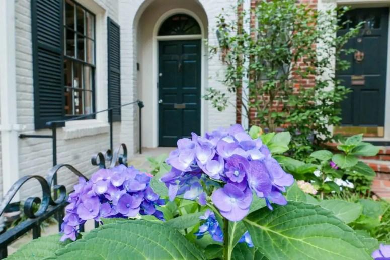 Georgetown Flowers House