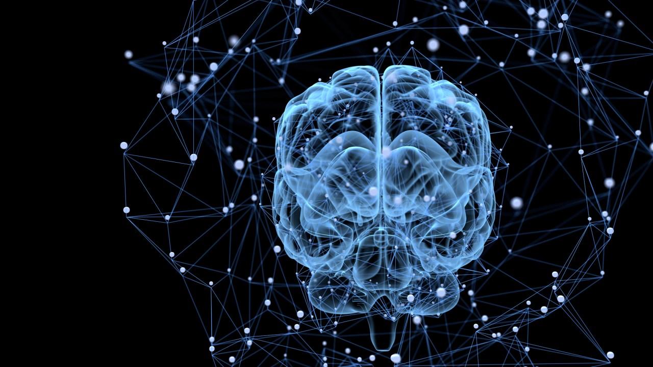 Male ADHD brain