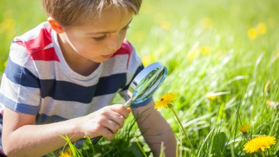 A young boy with ADHD looks at a flower.