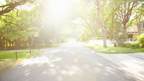 A path with lots of sunlight which is essential if you can't sleep.
