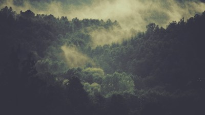 Natural beauty, like the Smokey Mounitains, can be a method of treating ADHD