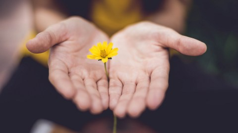 A woman with ADHD holds a flower, a symbol of her new year's resolution to be hopeful.
