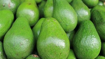 avocado omega3