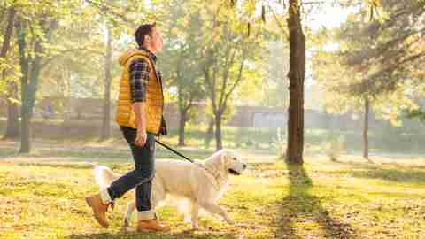 Man walking his dog during the holidays as a form of stress relief