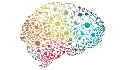 The neurology of the ADHD brain