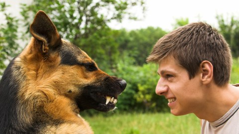 A man conquers his phobia of dogs by spending time with a dog.