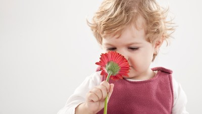 A child with SPD smells a flower