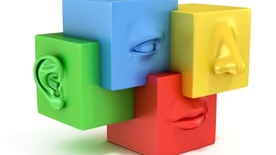 sensory processing disorder and hypersensitivity are common in people with ADHD