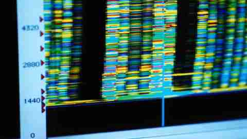 Genetic code for DNA that is linked to ADHD