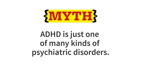 ADHD differs from many other disorders in that it cross-cuts other disorders. The executive function impairments that constitute ADHD underlie other disorders as well. Many learning and psychiatric disorders could be compared to problems with a specific computer software package that, when not working well, interferes with a few functions. ADHD might be compared to a problem in the computer's operating system that is likely to interfere with the operation of many different programs.