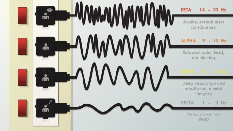 Mind Modulations Brainwave Infographic. Types of waves that can improve with neurofeedback.