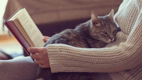 A woman with ADHD sits and reads with a cat on her lap.