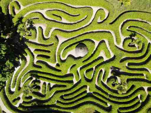 A maze representing the ADHD brain