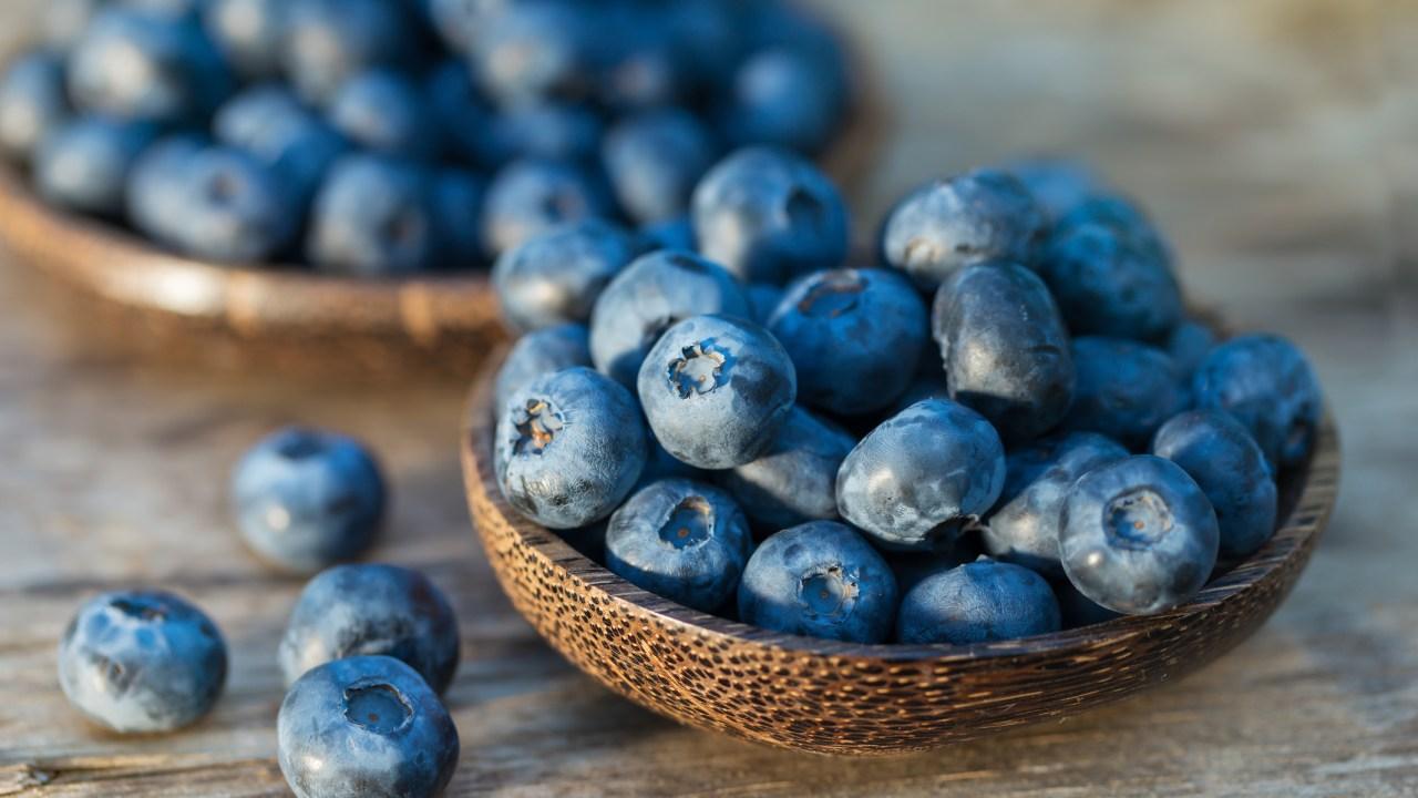 Blueberry OPCs